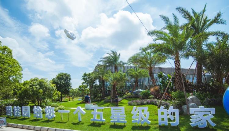 碧桂园凤凰湾 : 实景图 - 实景图